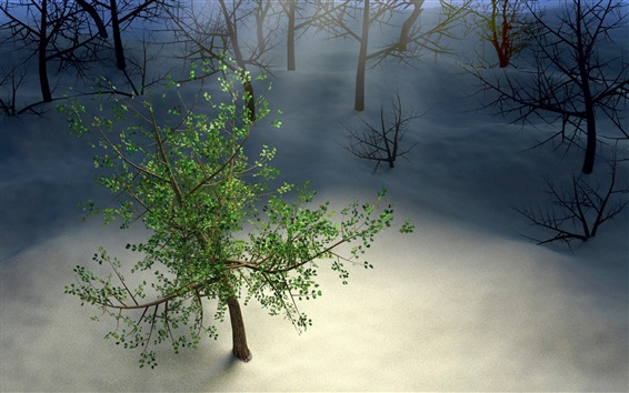Wallpaper Only one green tree, snow, winter, creative picture