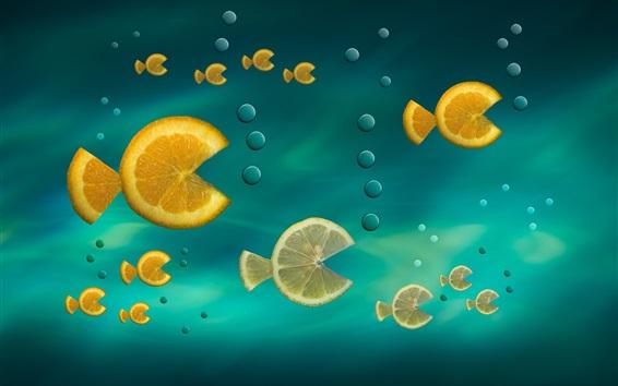 Wallpaper Orange slice, fish, creative