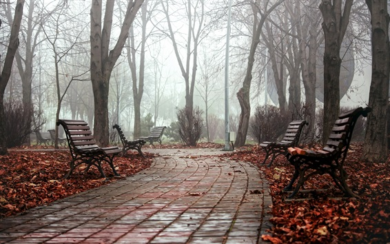 Wallpaper Park, bench, path, trees, fog, morning