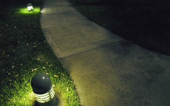 Wallpaper Path, lamp, grass, night