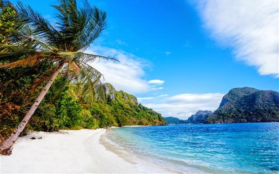 Обои Филиппины, пляж, море, пальмы, голубое небо