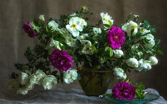 Fondos de pantalla Rosas púrpuras y blancas, florero, naturaleza muerta
