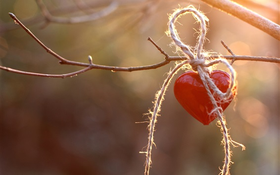 Wallpaper Red love heart, rope, twigs