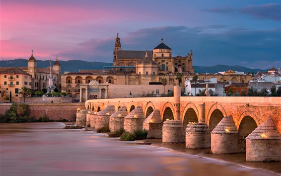 Wallpaper Roman bridge, river, Spain