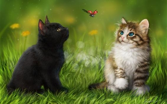 Papéis de Parede Dois gatos na grama observam o vôo da joaninha