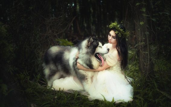 Wallpaper White skirt bride and dog
