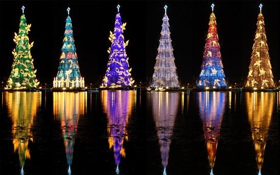 Fond d'écran Brésil, beaux arbres de Noël, lumières, rivière, nuit