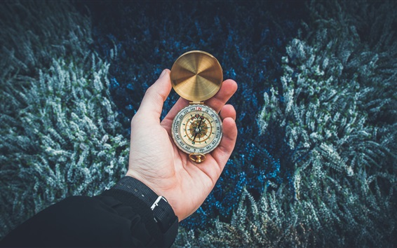 Wallpaper Compass in the hand