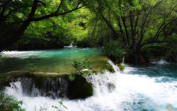 Papéis de Parede Croácia, córrego, cachoeira, árvores, verde