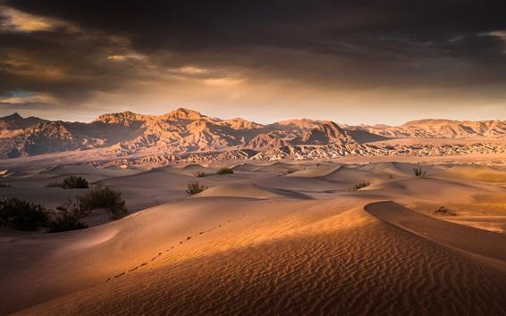 Wallpaper Death Valley, desert, USA