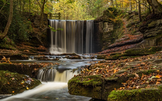Wallpaper England, Wales, waterfall, river, trees