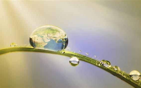 壁紙 草、水滴、地球、創造的な写真