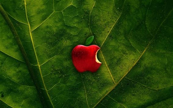Обои Зеленый лист, красное яблоко, капли воды, логотип