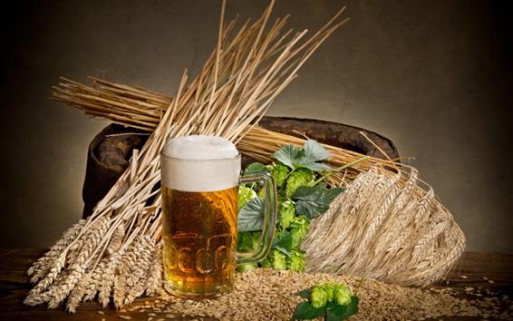 Обои Хмель, пиво, стакан, пена