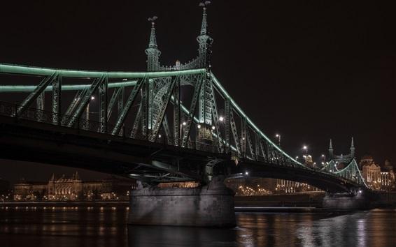 Fond d'écran Hongrie, Budapest, Pont de la Liberté, Danube, nuit, illumination