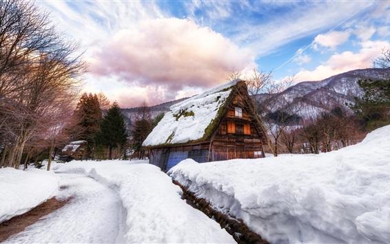 Fond d'écran Japon, village, maison, neige épaisse, hiver, arbres, nuages