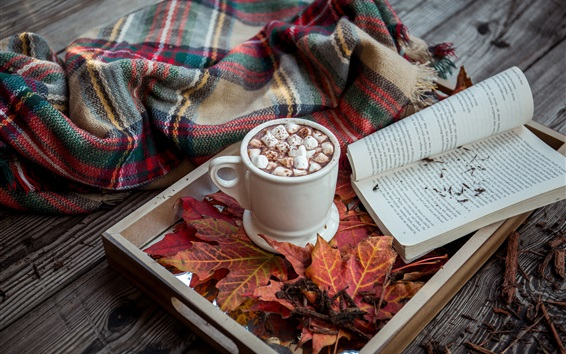 Papéis de Parede Marshmallow, bebidas, cacau, livro, folhas de maple