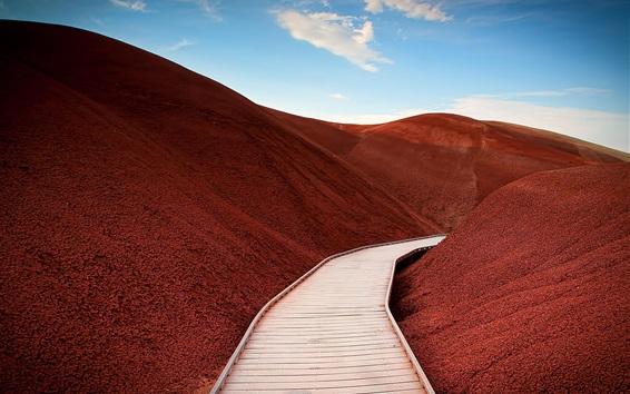 Wallpaper Mitchell, paintedhills, mountains, path, USA