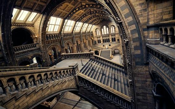 Обои Музей естественной истории, Лондон, Англия