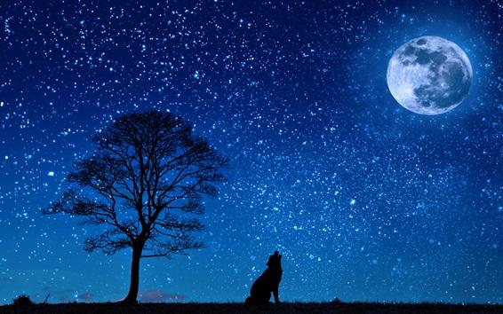 Wallpaper Night, tree, wolf, moon, stars, silhouette