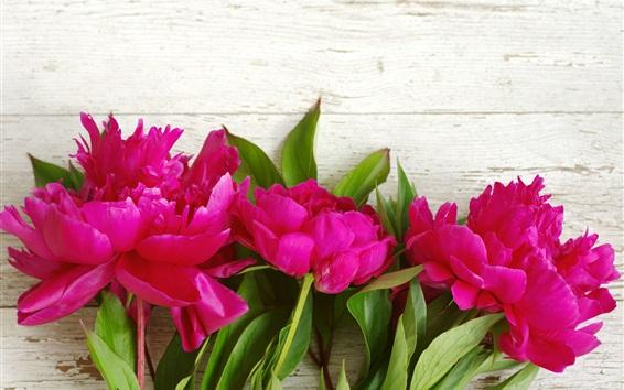 Wallpaper Pink peonies, flowers, wood background