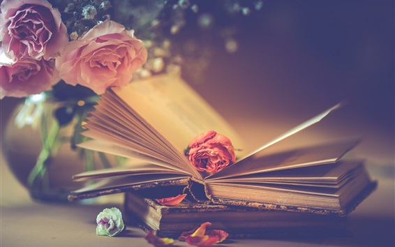 Wallpaper Pink roses and books, romantic