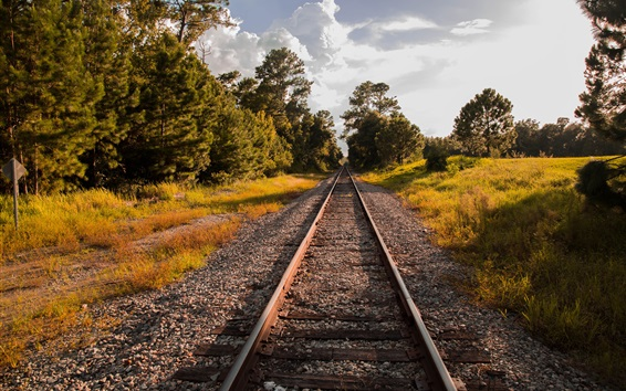 Papéis de Parede Ferroviária, árvores, outono, luz do sol