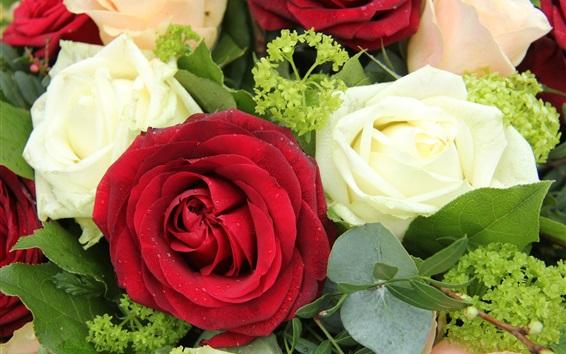 壁紙 赤と白のバラ、花、花束