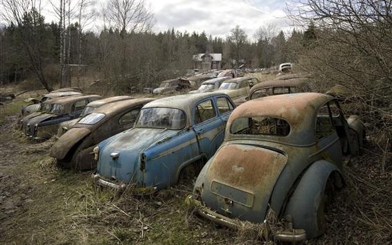 Wallpaper Scrap cars