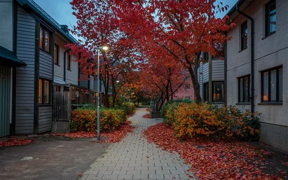 Wallpaper Sweden, Stockholm, street, houses, trees, autumn