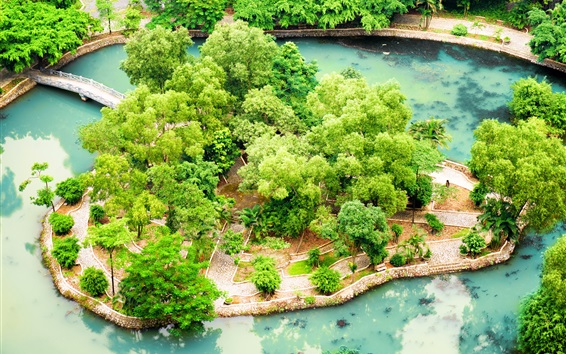 Papéis de Parede Vietnã, Ninh Binh, jardim tropical, lagoa, arbustos
