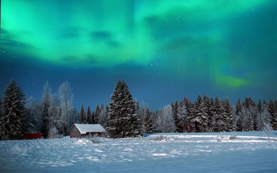 Wallpaper Winter, night, trees, house, snow, northern lights