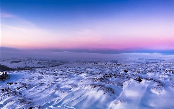 Wallpaper Winter, snow, fog, morning