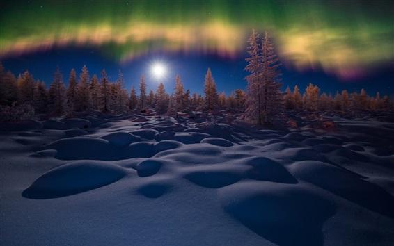 배경 화면 겨울, 눈, 밤, 나무, 오로라