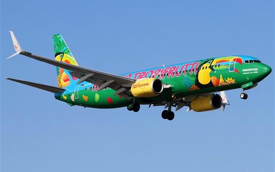 Fond d'écran Avion de passagers Boeing 737-8K5, dessin d'art