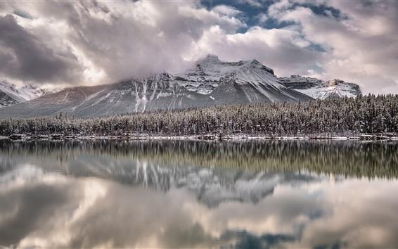 Обои Канада, Альберта, озеро, горы, деревья, снег, зима
