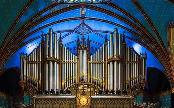 Fondos de pantalla Canadá, Basílica de Notre Dame