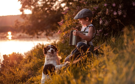 Wallpaper Child boy play accordion, furry dog, river, sunshine