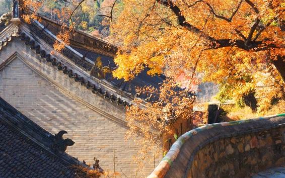 Papéis de Parede China, casa, árvores, outono