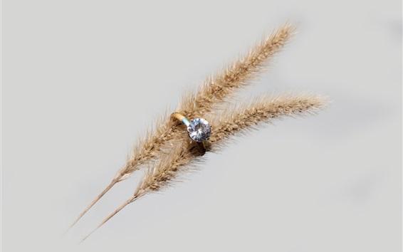 Обои Алмазное кольцо, колоски