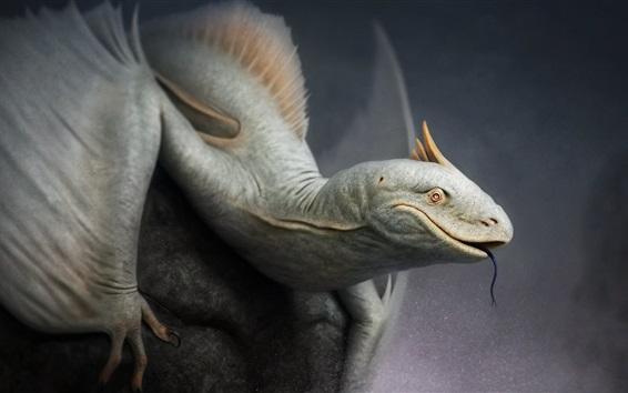 Wallpaper Fantasy art, lizard