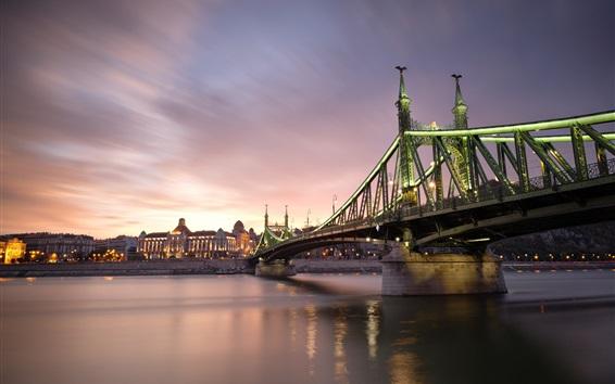 Fond d'écran Hongrie, Budapest, nuit de la ville, pont, rivière, illumination