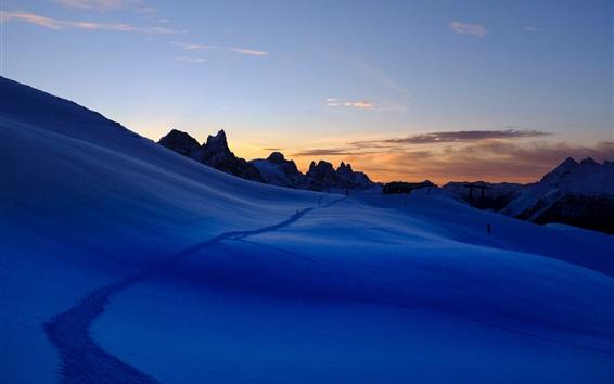 Wallpaper Night, snow, trail, winter