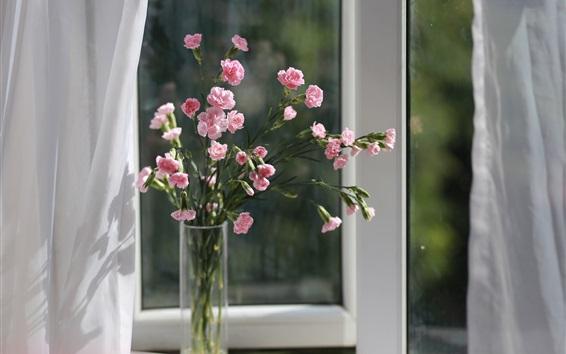 Papéis de Parede Cravo rosa, flores, vaso, janela