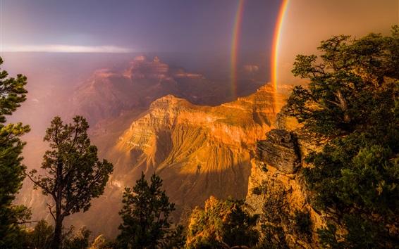Papéis de Parede Arco-íris, canyon, árvores, rochas, montanhas, EUA