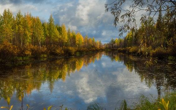 배경 화면 나무, 강, 구름, 물 반사, 가을