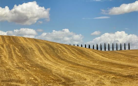 Wallpaper Tuscany, Italy, trees, fields, hills, autumn