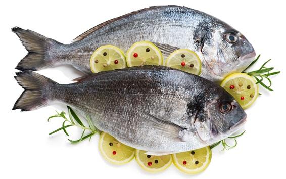 Papéis de Parede Dois peixes, fatias de limão, fundo branco