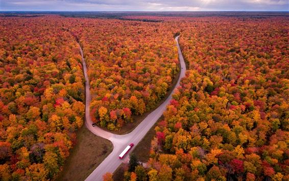 Fond d'écran USA, Michigan, automne, arbres, route, camion, vue de dessus