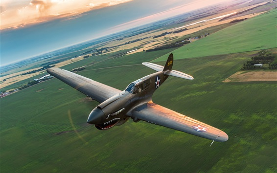Wallpaper Warhawk P-40 fighter flight, retro style